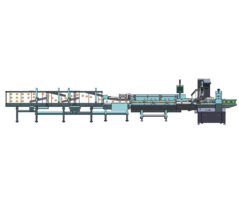一拖一单层自动理料线NH-FD1